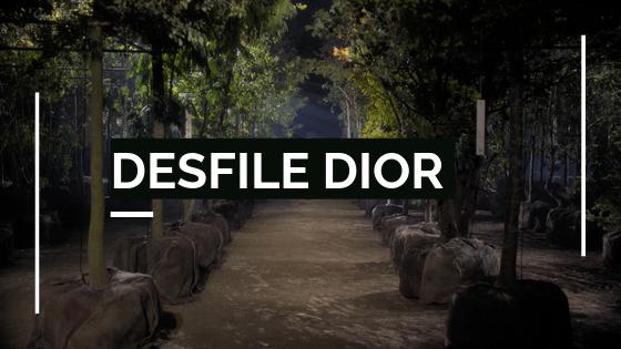 Banner Desfile Dior 2020
